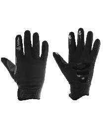 GLOVES WS WARM